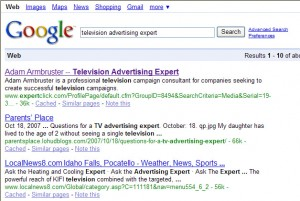 """Google results for """"television advertising expert"""""""