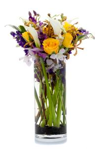 flowersinvasel2