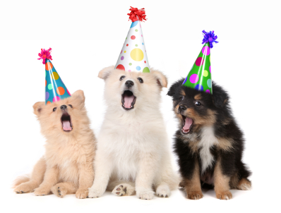 Is sending birthday greetings on Facebook a time waster? | The