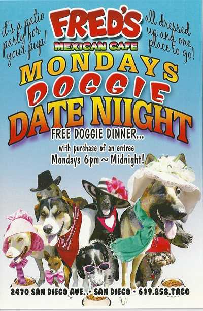 san diego doggy event side 1