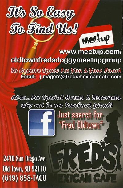 san diego doggy event side 2
