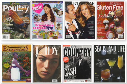Magazines launched in November 2013